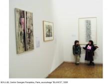 http://www.beatrice-casadesus.com/files/gimgs/th-62_Casadesus_Vues-Expos_27_Pompidou_2009.jpg