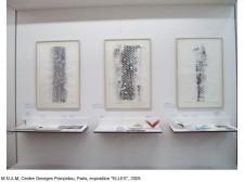 http://www.beatrice-casadesus.com/files/gimgs/th-62_Casadesus_Vues-Expos_28_Pompidou_2009.jpg