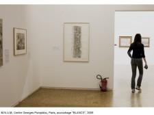 http://www.beatrice-casadesus.com/files/gimgs/th-62_Casadesus_Vues-Expos_29_Pompidou_2009.jpg