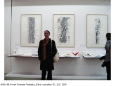 http://www.beatrice-casadesus.com/files/gimgs/th-62_Casadesus_Vues-Expos_35_Pompidou_2009.jpg