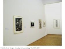 http://www.beatrice-casadesus.com/files/gimgs/th-62_Casadesus_Vues-Expos_36_Pompidou_2009.jpg